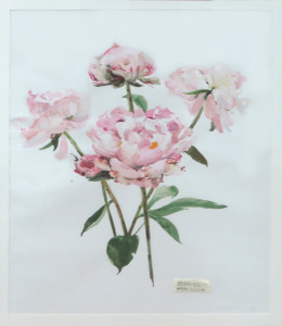 Sylvia Isaac -Peonies -best watercolour